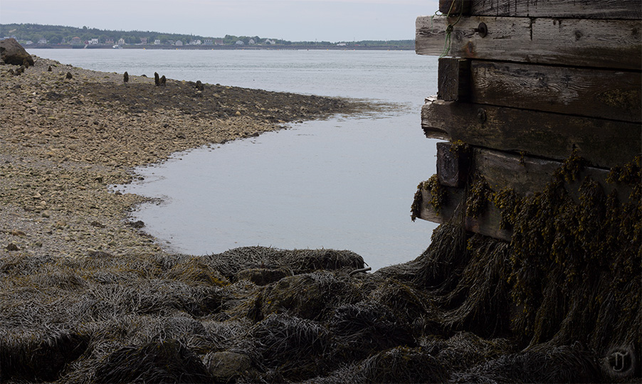 Low Tide in Freeport
