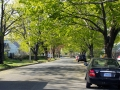 Rowe Avenue