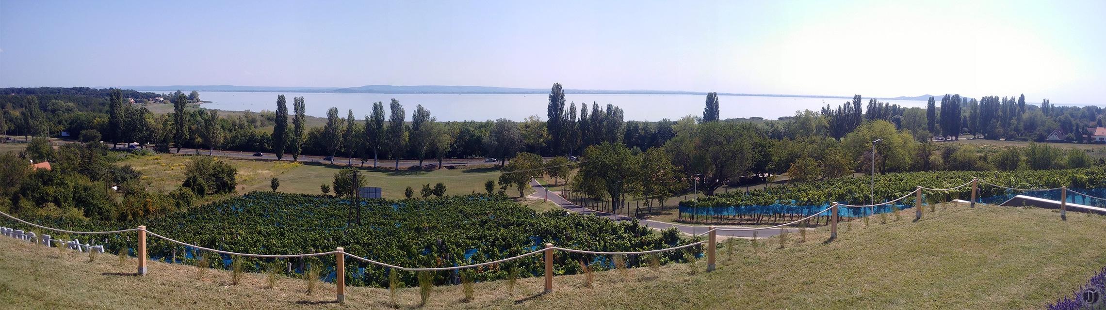 Lake Balaton Winery - Panorama