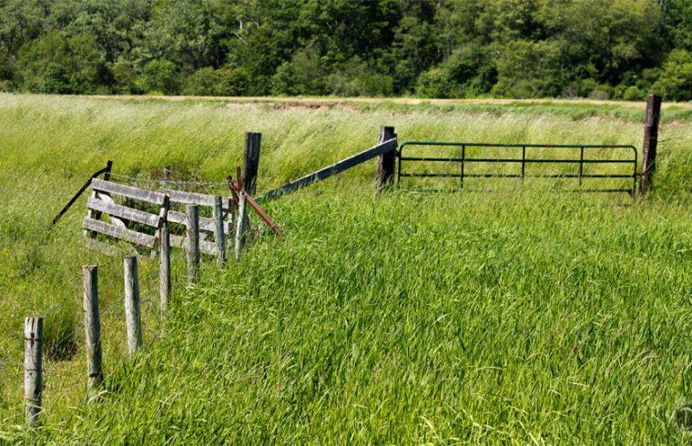 Farmers Fence in Kentville, Nova Scotia